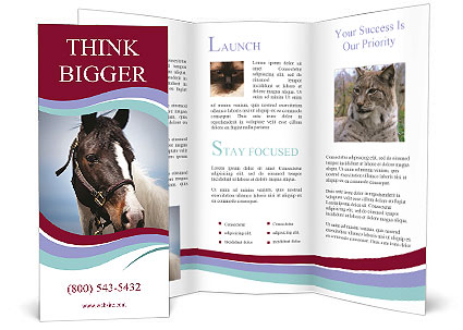 0000060529 Brochure Template