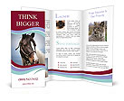 0000060529 Brochure Templates