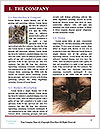 0000060529 Word Templates - Page 3