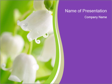 0000060537 PowerPoint Template