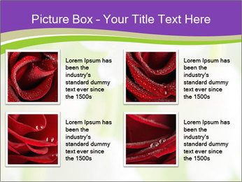 0000060537 PowerPoint Template - Slide 14