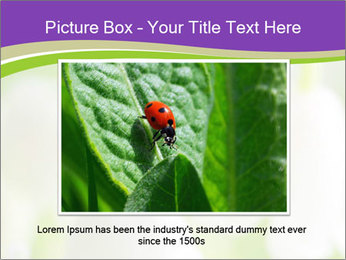 0000060537 PowerPoint Template - Slide 16