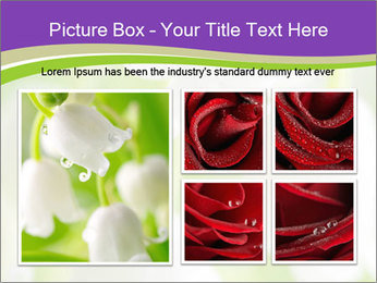 0000060537 PowerPoint Template - Slide 19