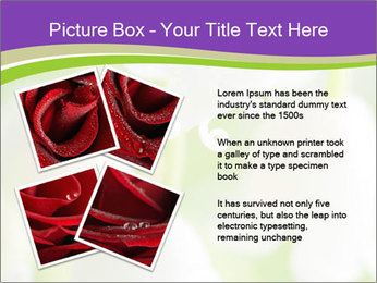 0000060537 PowerPoint Template - Slide 23