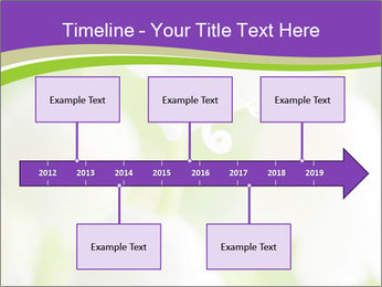 0000060537 PowerPoint Template - Slide 28