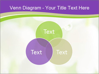 0000060537 PowerPoint Template - Slide 33