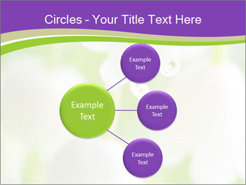0000060537 PowerPoint Template - Slide 79