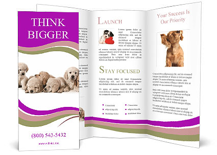 0000060545 Brochure Template