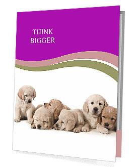 0000060545 Presentation Folder