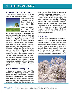 0000060551 Word Template - Page 3