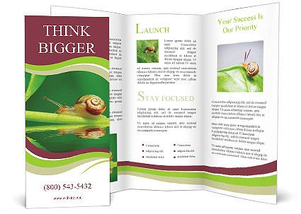 0000060558 Brochure Template