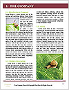0000060558 Word Templates - Page 3