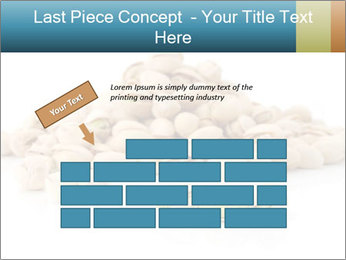 0000060579 PowerPoint Template - Slide 46