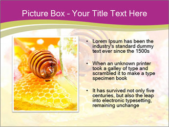0000060581 PowerPoint Templates - Slide 13