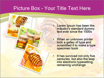 0000060581 PowerPoint Templates - Slide 17