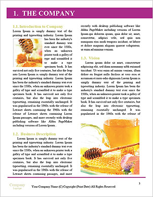 0000060581 Word Template - Page 3