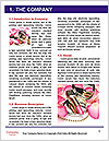 0000060583 Word Template - Page 3