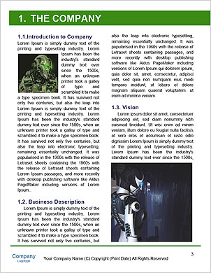 0000060614 Word Template - Page 3