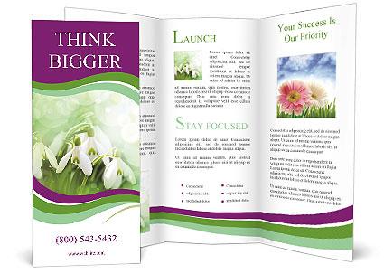 0000060616 Brochure Template