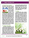 0000060616 Word Templates - Page 3