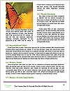 0000060616 Word Templates - Page 4