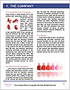 0000060619 Word Template - Page 3