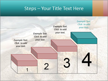 0000060621 PowerPoint Template - Slide 64