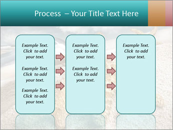 0000060621 PowerPoint Template - Slide 86