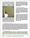 0000060623 Word Template - Page 4