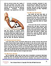 0000060628 Word Templates - Page 4