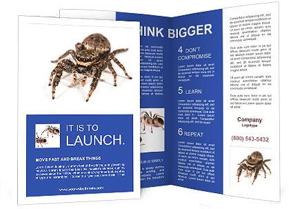 0000060636 Brochure Template