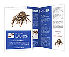 0000060636 Brochure Templates
