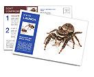 0000060636 Postcard Templates