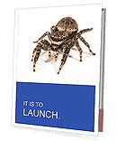 0000060636 Presentation Folder