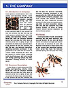 0000060636 Word Template - Page 3