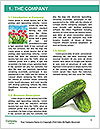 0000060641 Word Templates - Page 3