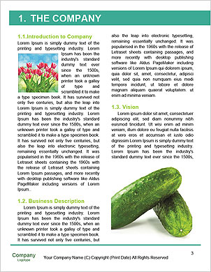 0000060641 Word Template - Page 3