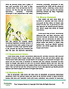 0000060641 Word Templates - Page 4