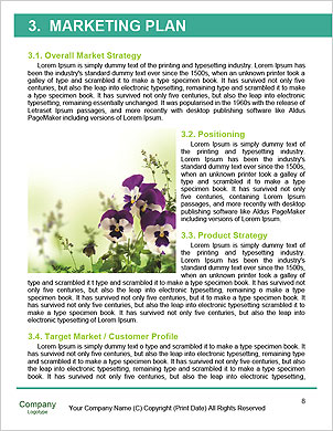 0000060641 Word Template - Page 8