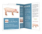 0000060643 Brochure Templates