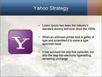 0000060646 PowerPoint Templates - Slide 11
