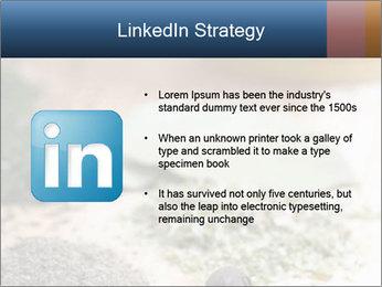 0000060646 PowerPoint Templates - Slide 12