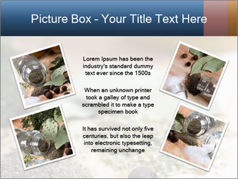 0000060646 PowerPoint Templates - Slide 24