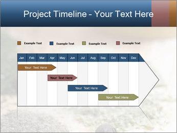 0000060646 PowerPoint Templates - Slide 25