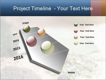 0000060646 PowerPoint Templates - Slide 26