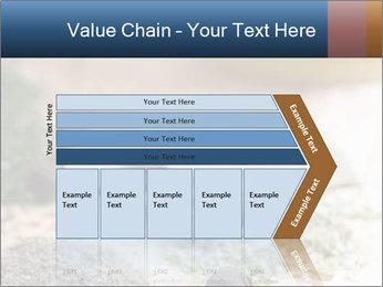0000060646 PowerPoint Templates - Slide 27