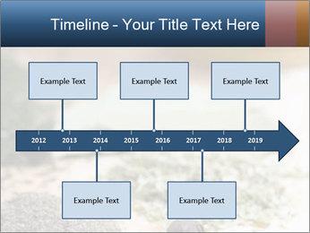 0000060646 PowerPoint Templates - Slide 28