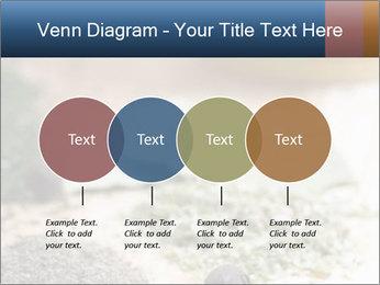 0000060646 PowerPoint Templates - Slide 32