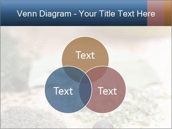 0000060646 PowerPoint Templates - Slide 33