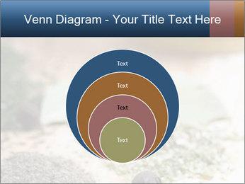 0000060646 PowerPoint Templates - Slide 34